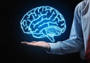 allenare il cervello